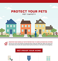 Pet Protection: Pet Safety Tips