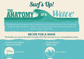 Surf's Up! The Anatomy of a Wave