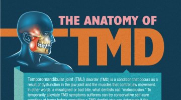 The Anatomy of TMD