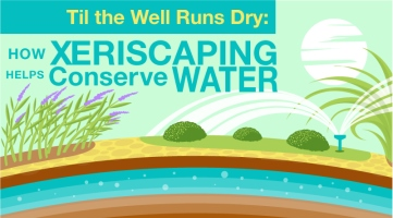 Til the Well Runs Dry: How Xeriscaping Helps Conserve Water