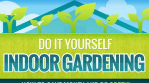 DIY-Indoor-Gardening-How-to-Save-Money-&-Be-Green
