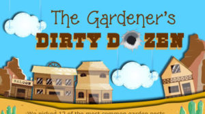 How To Get Rid Of Garden Pests Without Pesticides
