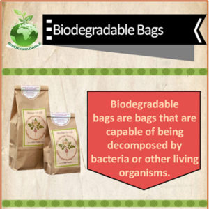 Infographic of Biodegradable Bags