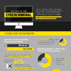 The Rise of The Cyber Criminal