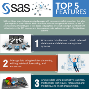 SAS - Top 5 Features