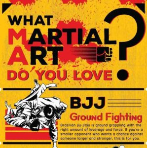 What Martial Art Do You Love