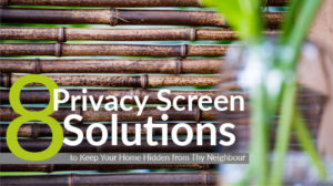 8-Privacy-Screen-Solutions-featured