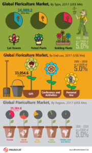 global floriculture market infographics