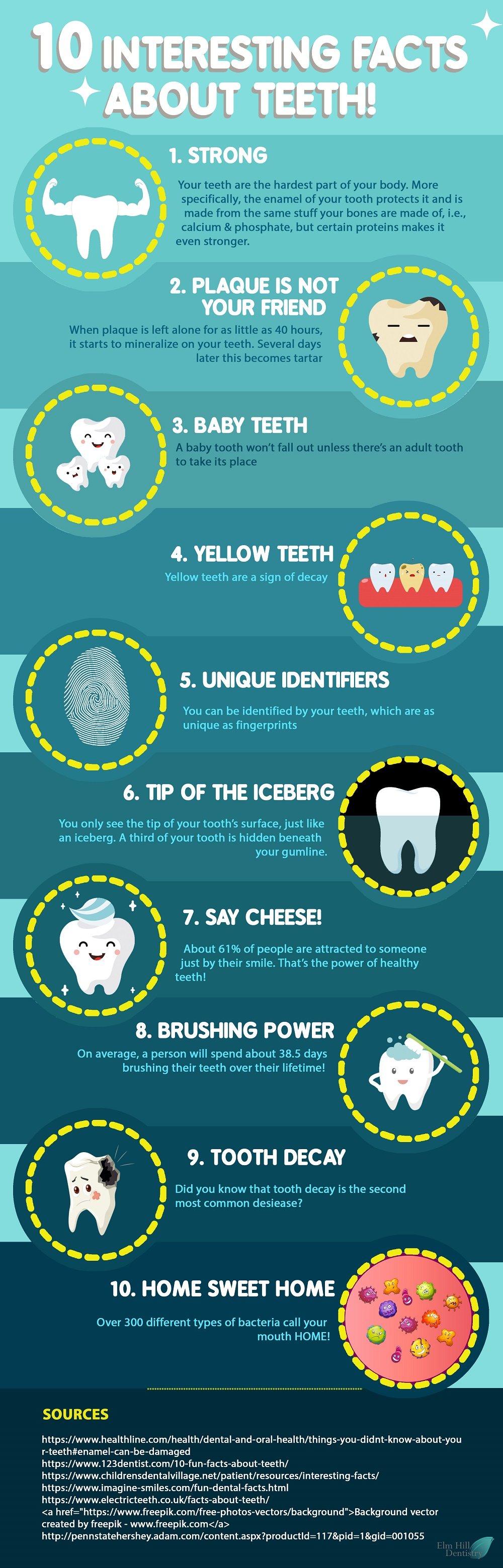 10 Interesting Facts About Teeth Infographic