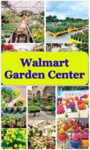 walmart-garden-center-614x1024