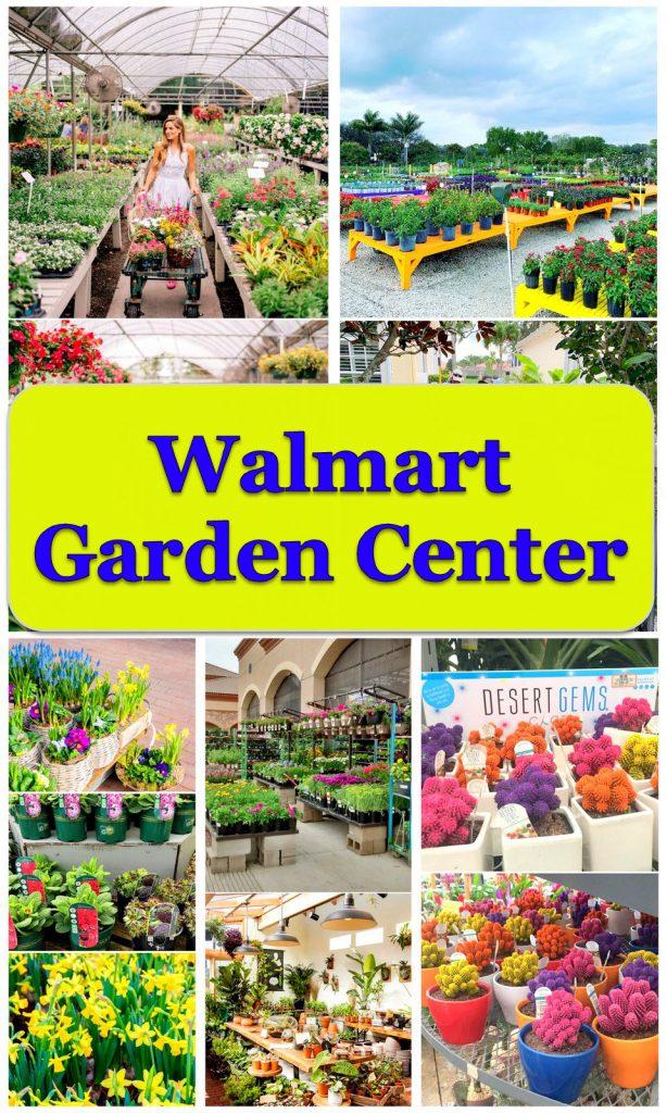 20+ Ideas Of Walmart Garden Center For Your Dream Gardening