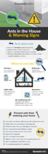 ants-in-the-house-warning-signs-infographic-groundworks