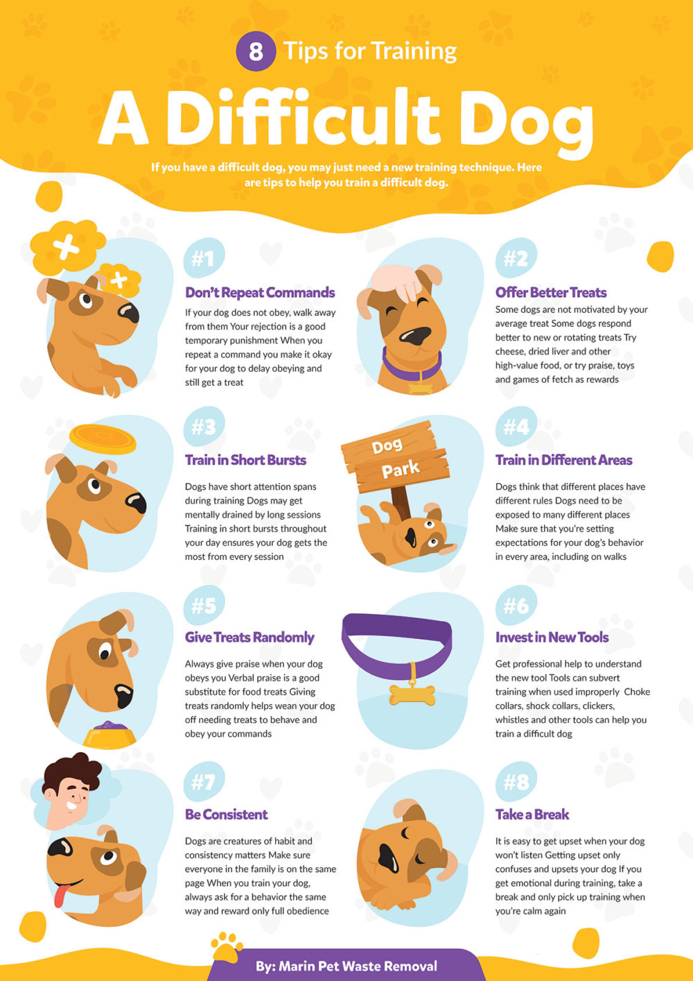 8 Tips for Training a Difficult Dog